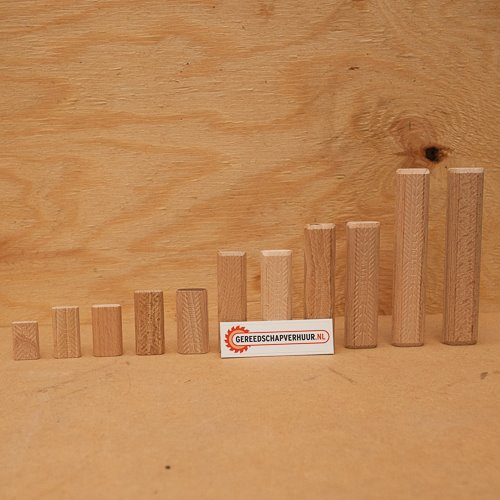 Domino Beuken 5 x 30 mm
